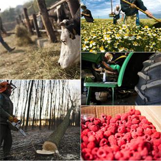 Mezőgazdaság (20)